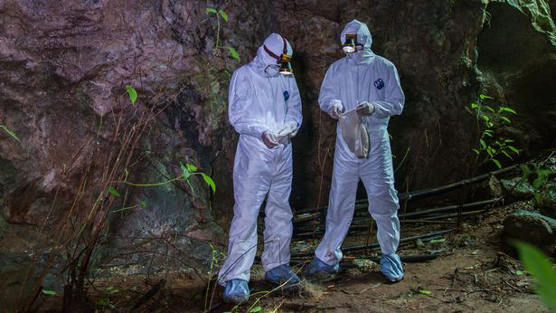 How mysterious bat infested collapse China the place Covid-like virus killed Three miners in 2012 could also be key to Wuhan 'lab leak'