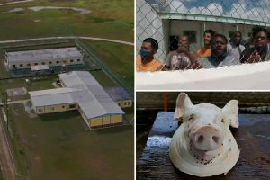 Inside scorpion-infested Belize jail holding Jasmine Hartin where inmates are beaten and fed fly-ridden pig heads