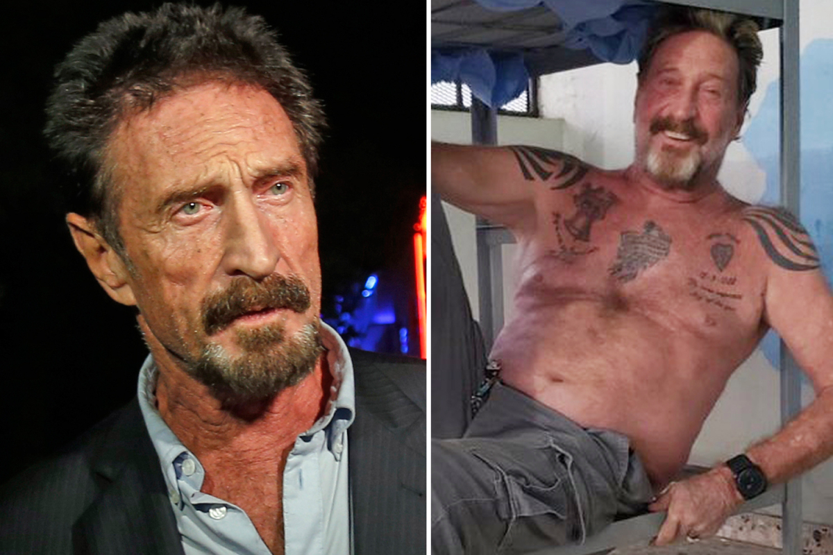 John McAfee was fascinated with 'quantum suicide' and tweeted about 'painless strategies' earlier than his jail dying
