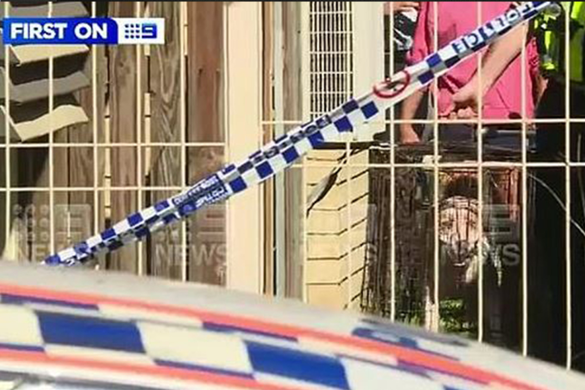 Girl mauled to dying by pack of ferocious canine outdoors dwelling in Australia