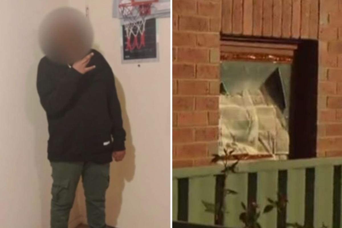 'Intercourse predator' boy, 16, 'tried to rape pensioner, 91, in her sleep throughout terrifying break-in'