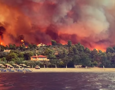 Dramatic footage exhibits Greek resort engulfed by wildfire as residents flee throughout the ocean and villages are destroyed