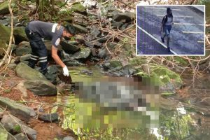Mystery as embassy official found murdered near waterfall on Thai island Phuket as tourists return after Covid