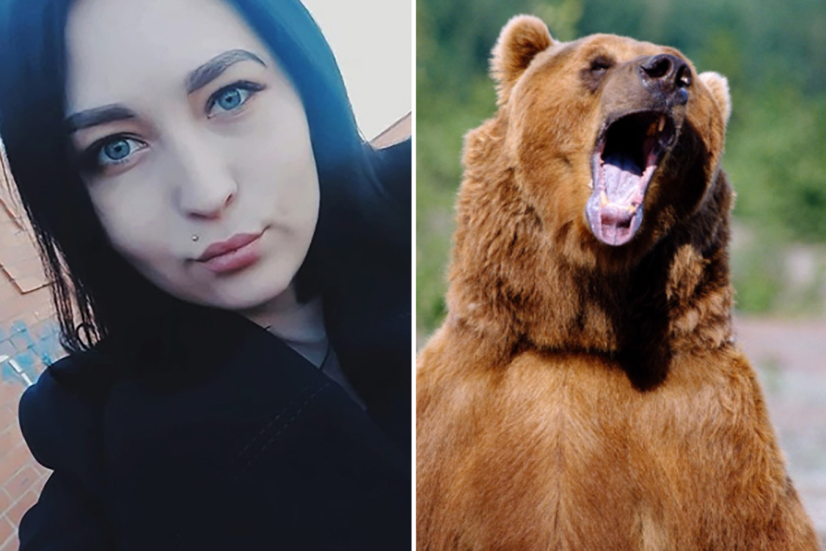Girl 'eaten alive' by pack of untamed bears after 'storming off throughout row at forest wedding ceremony'