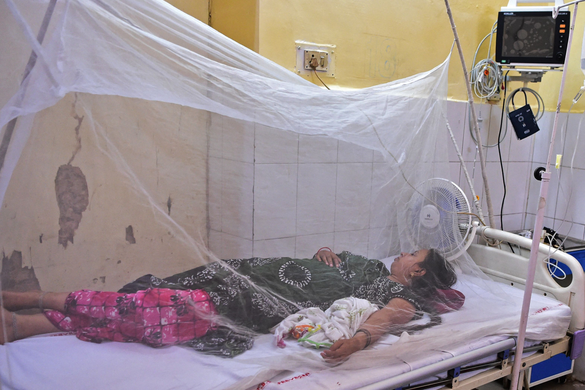 'Thriller fever' kills EIGHT kids in simply 10 days as illness continues to tear by way of India