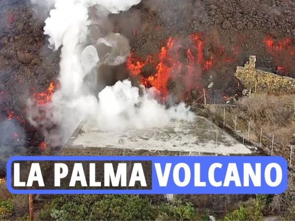 La Palma volcano – Video exhibits Canary Island swimming swimming pools BOIL as wall of lava flows down avenue amid poisonous fuel fears